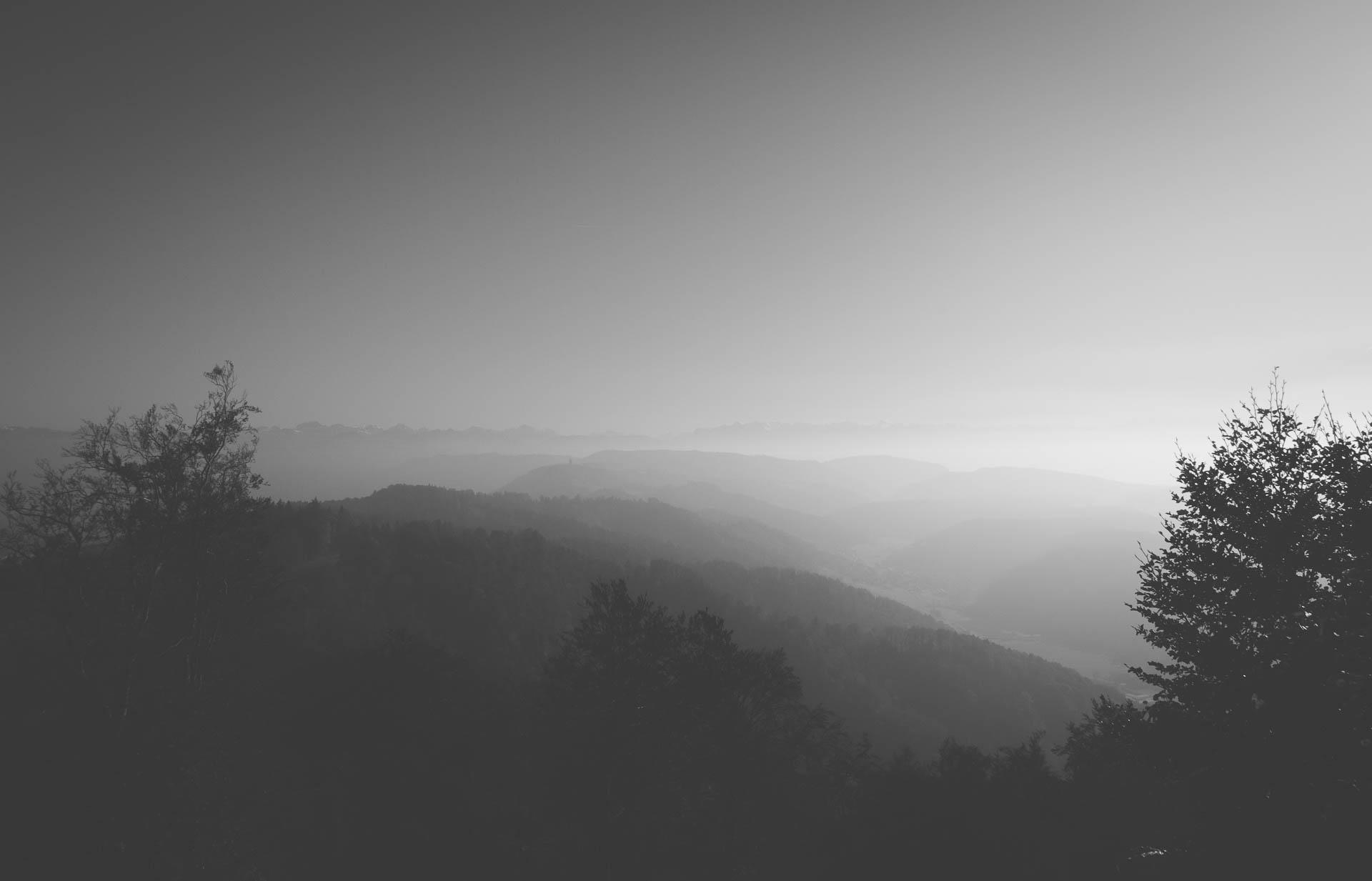 Zürich Blick zum Felsenegg im Nebel